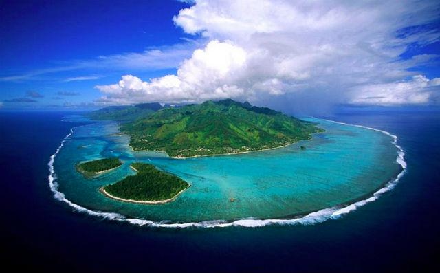 Идеальная планета будет состоять из мелких морей и живописных архипелагов, а населять её будут коренастые животные