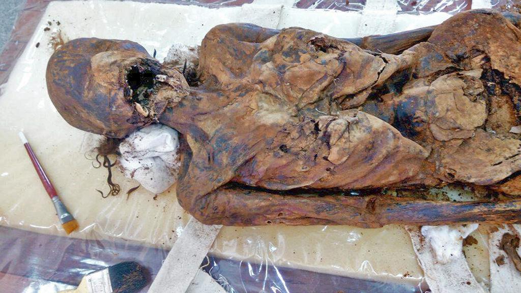 Одна из мумий оазиса Дахла. Фото:═Egyptian Ministry of Antiquities
