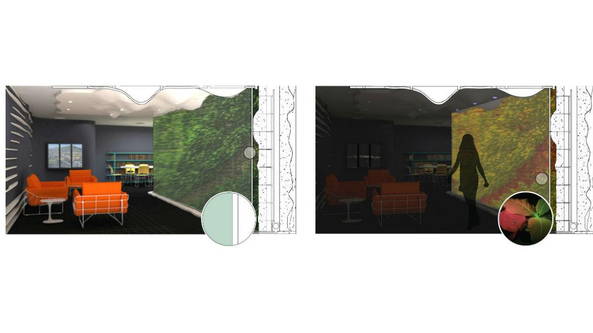Стена из фитосенсоров может выглядеть следующим образом. Слева комната показана днём, справа √ она же в тёмное время суток и при определённом освещении.
