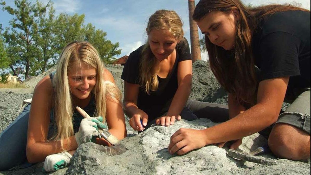 Студенты работают на месте нахождения останков древнего существа.