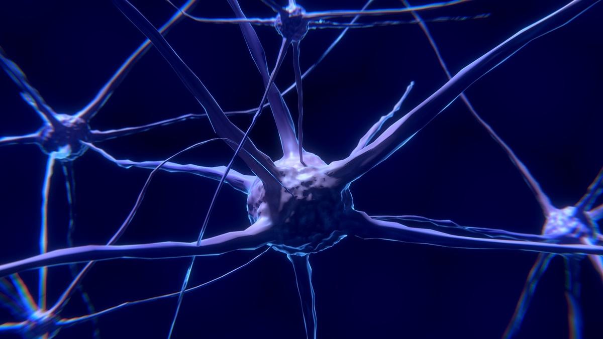 Фрагменты древней вирусной ДНК играют важнейшую роль в передаче данных между нейронами.