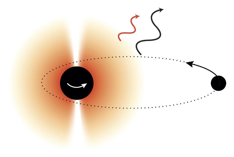 Облако бозонов должно наложить свой отпечаток на характеристики гравитационных волн.