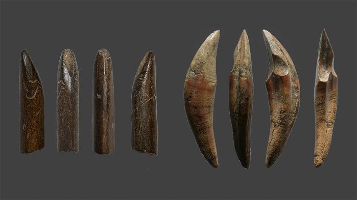 Древние жители Шри-Ланки превратили кости обезьян и белок, на которых они охотились, в такие орудия.