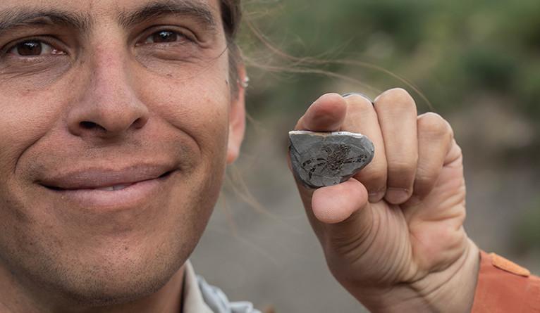 Найденное ракообразное озадачило учёных, и они прозвали его утконосом в мире крабов.
