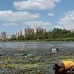 """Программа """"Вода России"""" в регионах. Очистка от мусора прибрежных зон"""