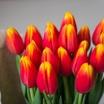 К 8 Марта эксперты ожидают повышение цен на цветы