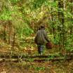 «Изюминки» экологической тропы «Екатерининский бор»