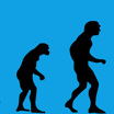 Как у древнего человека появилось прямохождение