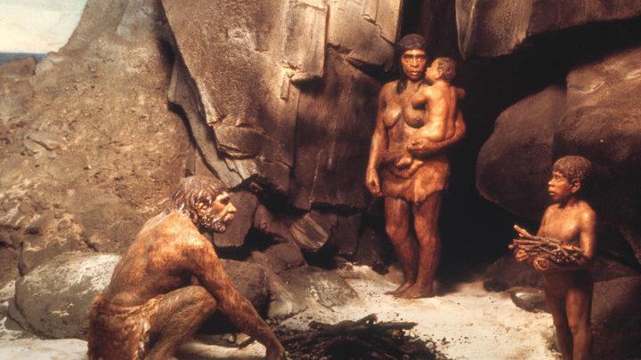 От обезьяны до человека. Загадочные неандертальцы и краманьонцы