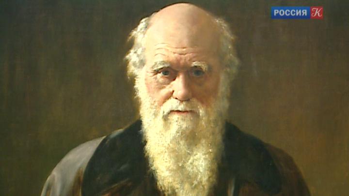 Из Кембриджского университета украли рукописи Дарвина