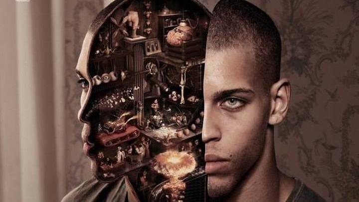 Человек, мозг, программа