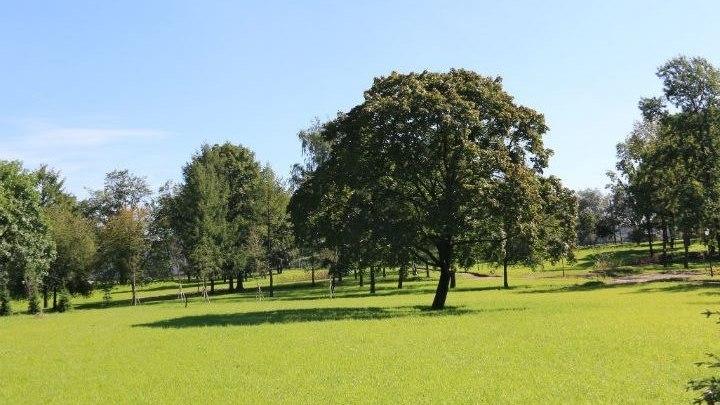 После несколько десятилетий запустения в Петербурге открылся парк Куракина дача