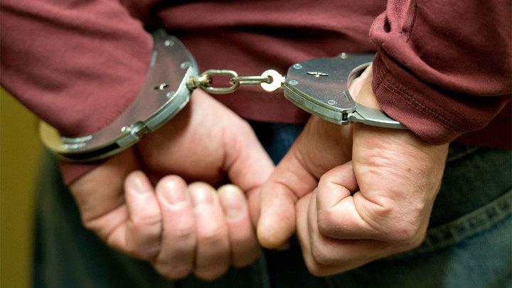 Добромыслов арестован