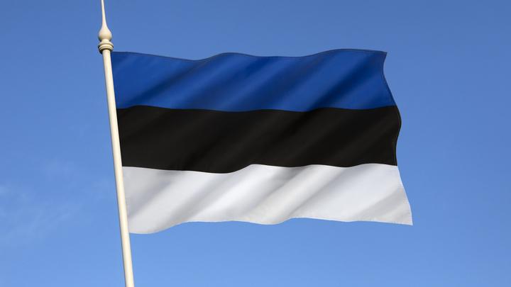 В Эстонии освободили привитых россиян от тестирования и самоизоляции