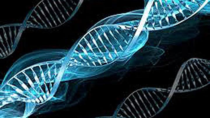 Структура гена.
