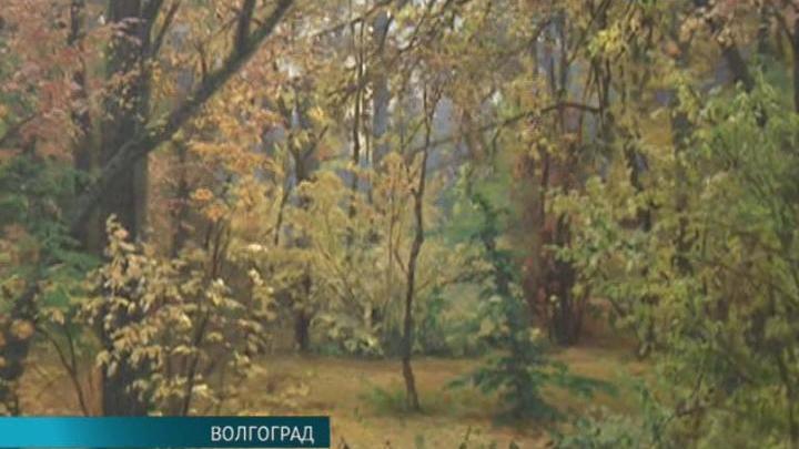 В Волгограде открылась выставка, посвященная 185-летию со дня рождения Ивана Шишкина