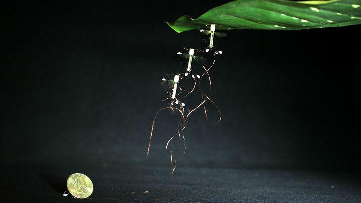 Механическая пчела весит всего 100 миллиграммов, как настоящее насекомое.