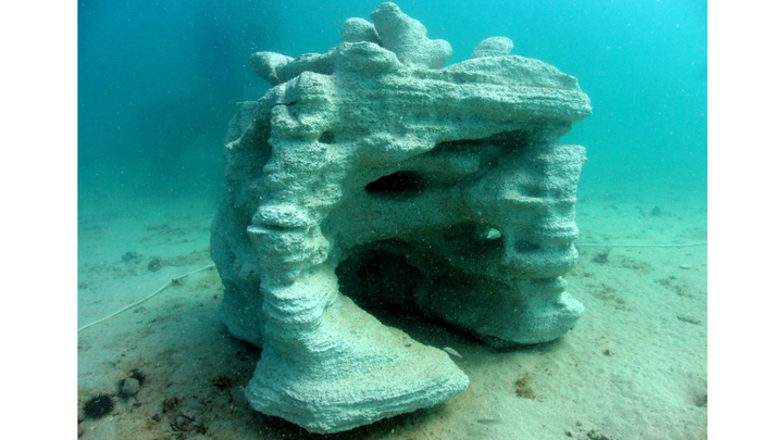 Напечатанная конструкция, имитирующая коралловый риф.