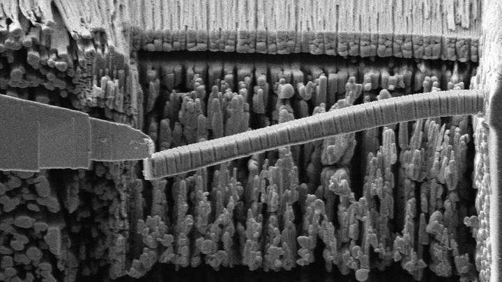 Эксперимент по изгибанию стержня из нового цемента. Изображение увеличено в 2000 раз и получено при помощи сканирующего электронного микроскопа.