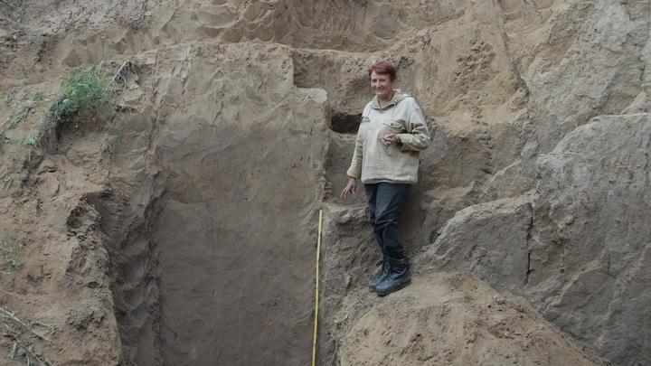 Разрез ископаемой почвы в береговом обрыве реки Песчаная (приток Оби).