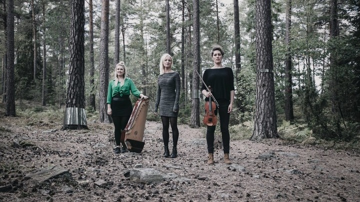 Трио Folk Avant. Фотографии со страницы трио Folk'Avant в социальной сети