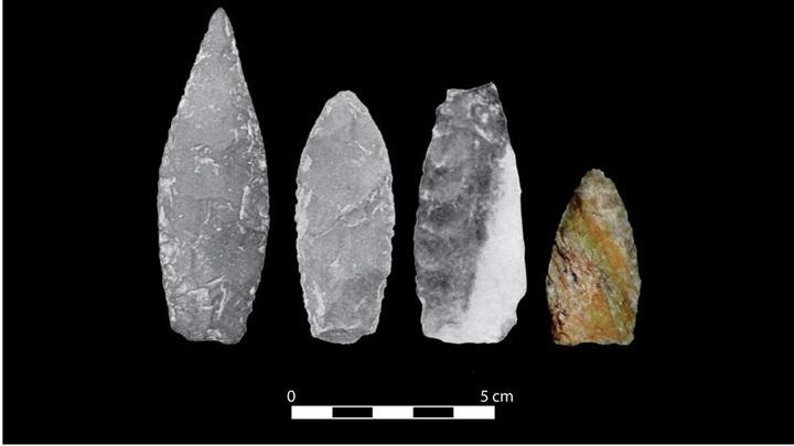 Найденные наконечники копий не имеют характерных для орудий Кловиса вертикальных желобков, зато почти все они сужаются к месту прикрепления к основанию.