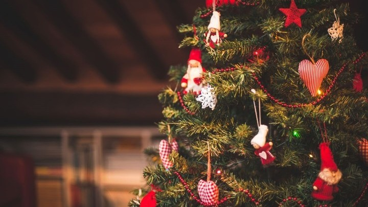 МЧС не советует хранить елки в квартирах до весны