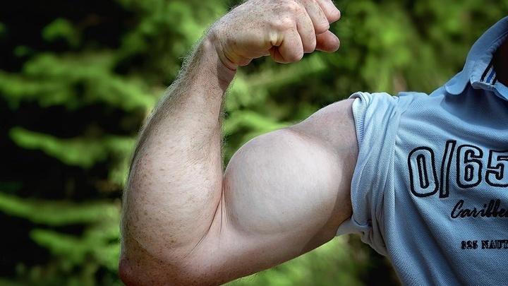 Человеческие мышцы растут и становятся крепче после каждой тренировки. Таким же свойством обладает новый материал.