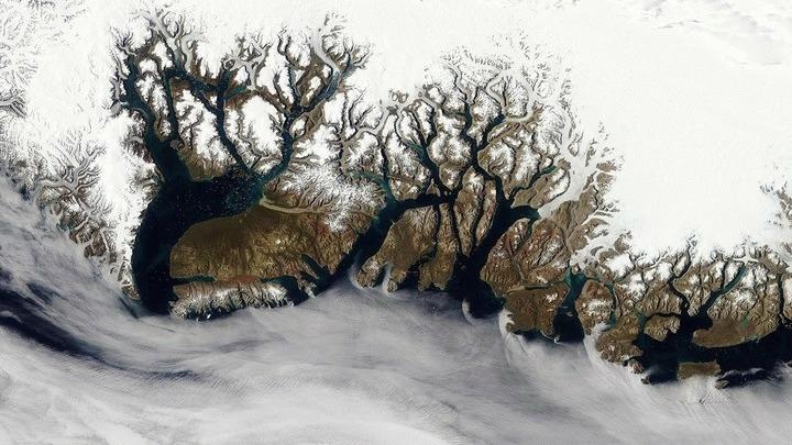 Земля из космоса. Восточное побережье Гренландии. 21 августа 2003 года. Фото из архива Н.Королевой.