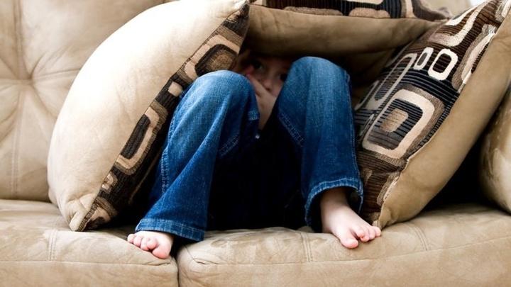 Новое исследование поможет улучшить понимание таких состояний как посттравматическое стрессовое расстройство и хроническая тревога.