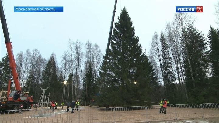 Главную елку страны готовят к установке на Соборной площади