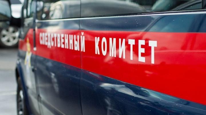 Уголовные дела возбуждены против матери и сестры экс-сенатора Арашукова