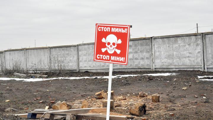 Шумы: солдат ВСУ подорвался на мине