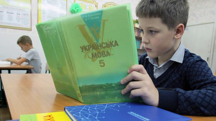 Затулин: закон о языке ведет к насильственной дерусификации Украины