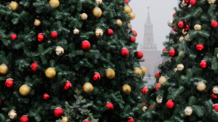 Россиянам посоветовали отметить Новый год обычным ужином