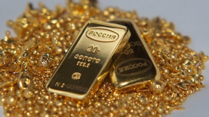 Минприроды запретит добычу золота в нерестовых реках Камчатки