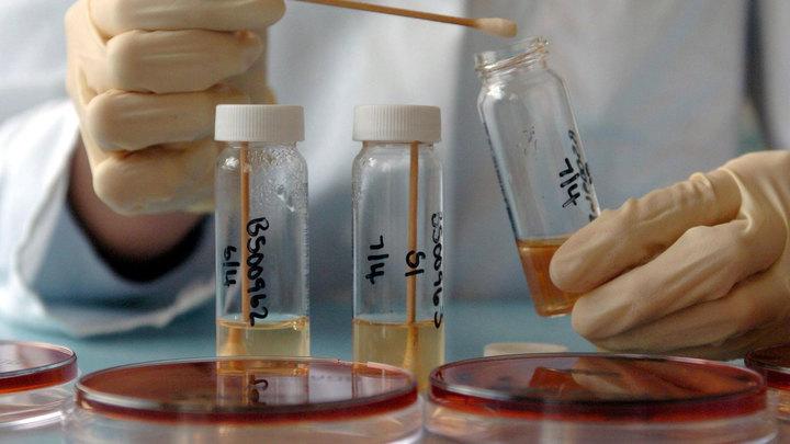 В Подмосковье и восьми регионах России обнаружена индюшатина с птичьим гриппом