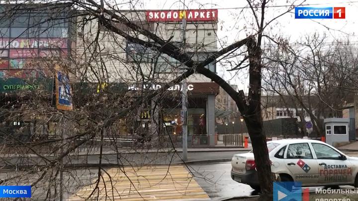 Повалены десятки деревьев, и ветер будет только усиливаться: в столице - оранжевый уровень опасности погоды
