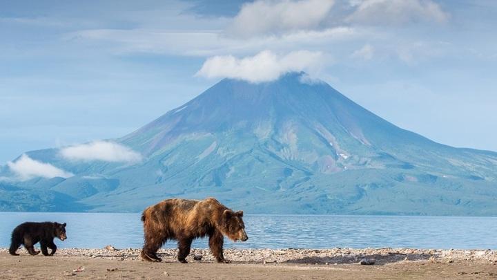 Стартовало онлайн-голосование за лучший снимок фотоконкурса «Самая красивая страна»