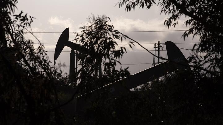 Жажда наживы побеждает страх: судьба рубля в руках нефти
