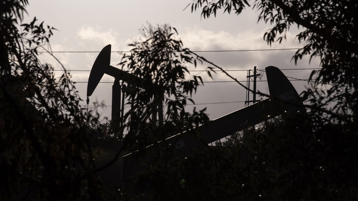 Fitch: Россия заработала на сокращении добычи нефти $30-40 млрд