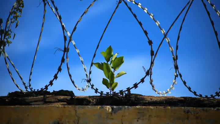 В Туркмении уклонистов от лечения будут сажать