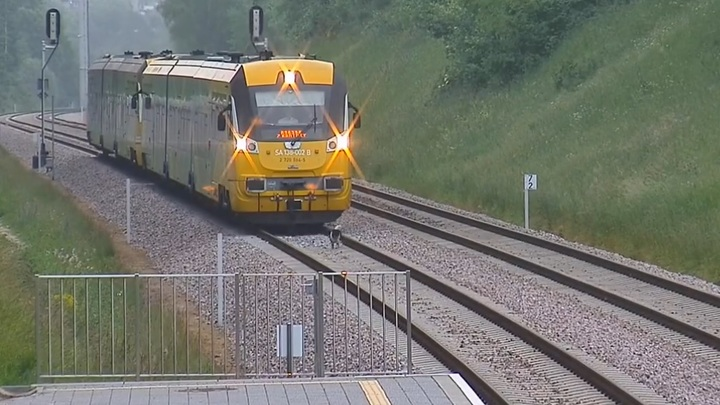 Невозмутимый пес остановил пассажирский поезд на железной дороге в Польше. Видео