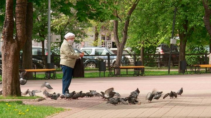 Пожилым воронежцам рекомендуют вернуться к режиму самоизоляции