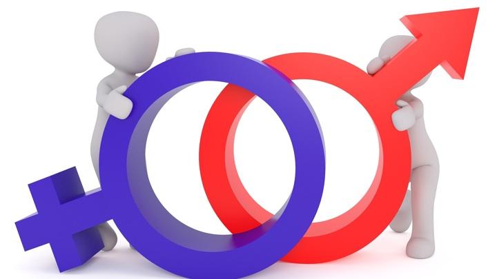 Новое исследование подтвердило реальность мужской бисексуальности.