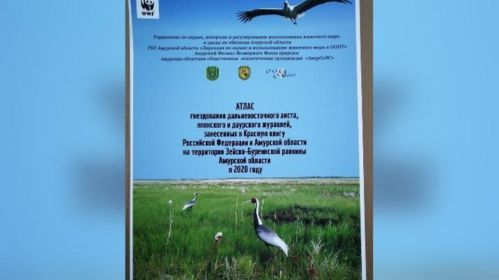 Атлас гнездования краснокнижных птиц появился в Приамурье