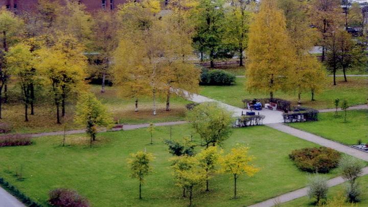 В Пензе выделят 100 миллионов на озеленение и содержание скверов