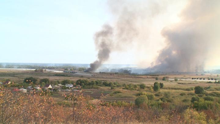 Крупный ландшафтный пожар в Воронежской области перекинулся через реку