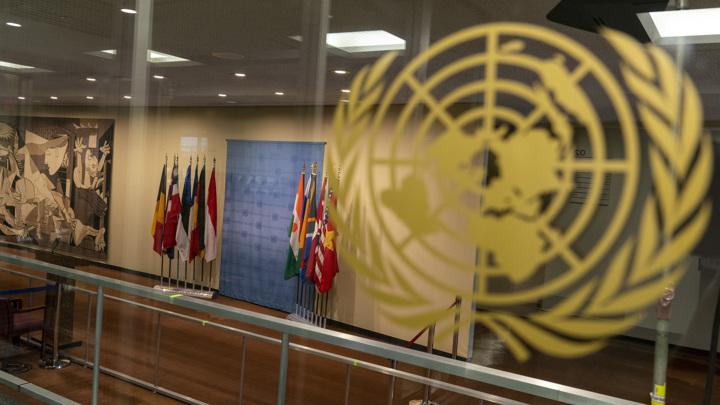 ООН отреагировала на смерть рожавшей девочки