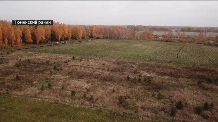 Чей гектар: в Тюменском районе разгорелся спор между Россельхознадзором и собственниками